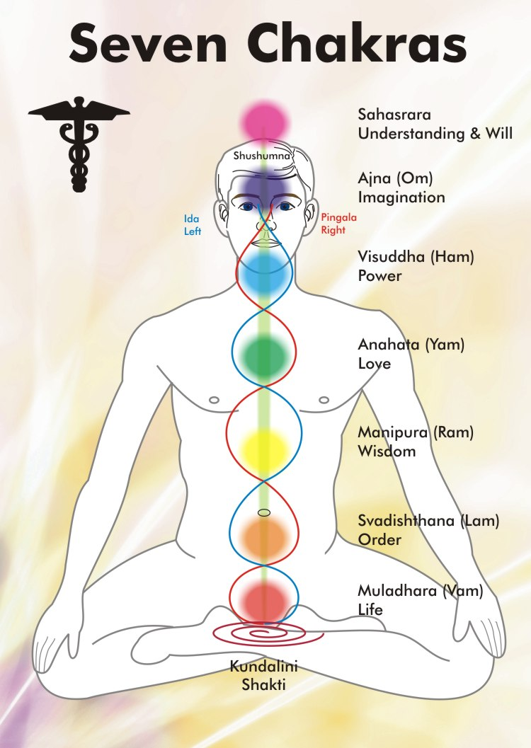 Image result for 7 chakras yoga