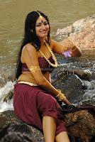 Hari, priya, hot, navel, show, and, cleavage, show