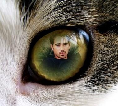 Efecto de Foto Ojo de Gato