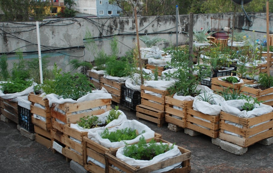 Huertos urbanos bah a de c diz gu a de huertos org nicos - Como hacer un huerto en el jardin ...