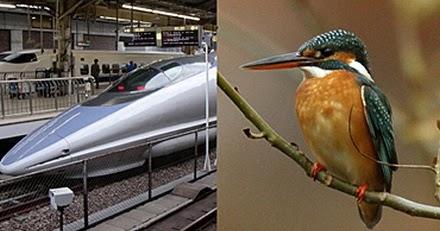 biomimetics: WIND, FLIGHT, AERODYNAMICS