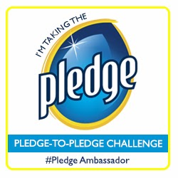 Pledge Ambassador