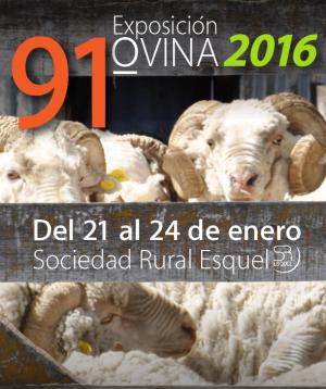 91ª Expo Ovina 2016