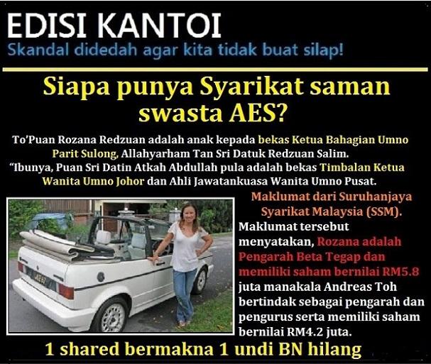 To'Puan Rozana Redzuan, AES dan Umno