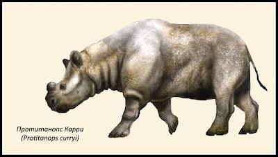 animales prehistoricos Protianops