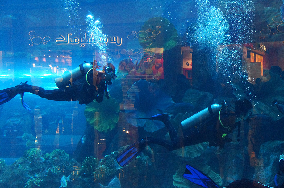 Ynas Reise BLog | VAE | Aquarrium in der Dubai Mall