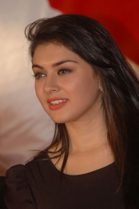 Hansika Motwani Wallpapers navel show