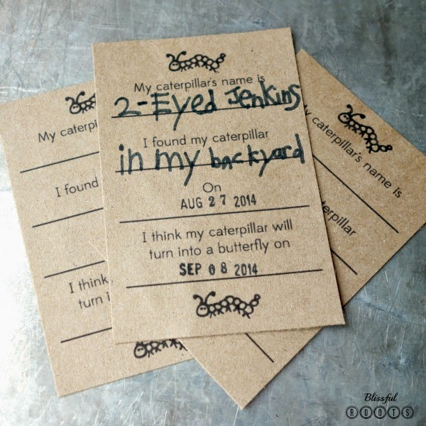 Caterpillar Hunting Invitation {Mason Jar Edition} @ Blissful Roots