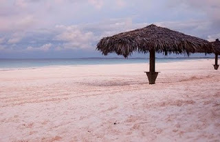 Pink sand beach in Harbour Island, Bahamas