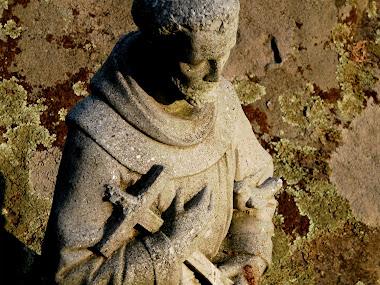St. Francis Unbound