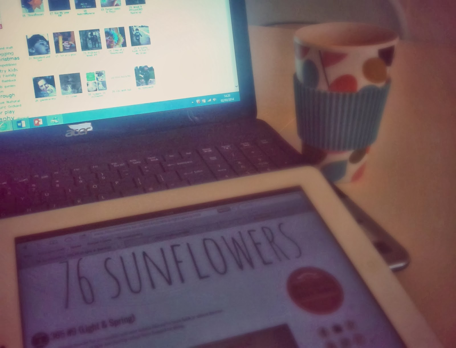 Project 365 day 61 - Blogging day // 76sunflowers