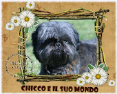 Our Dog Friends                        ** Chicco**