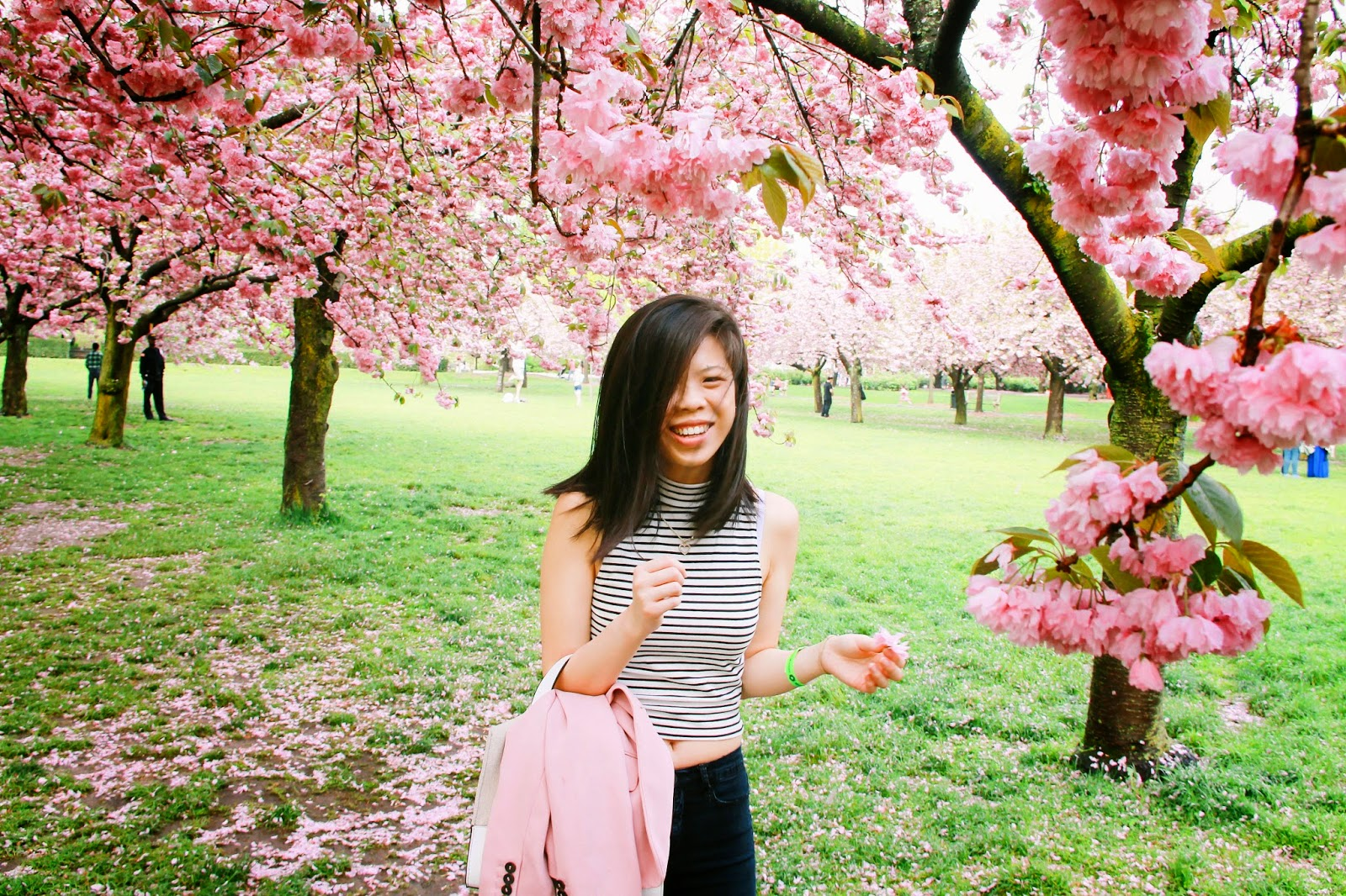 asian blogger, diningonstyle, Forever 21 striped crop top, cherry blossoms