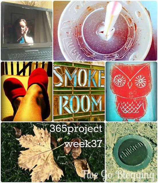 Five Go Blogging 365project week 37