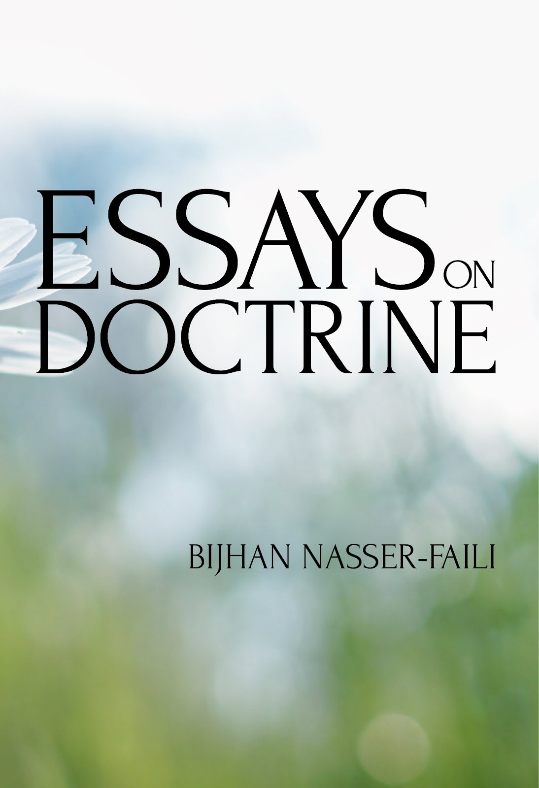 Essays on Doctrine
