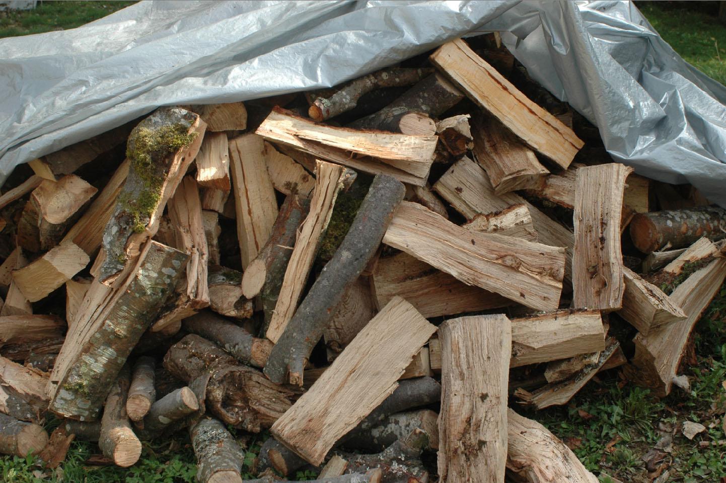 Pile Of Timber : Antipodes preparing winter wood