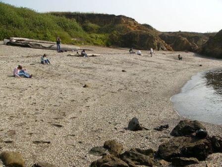 10 Pantai Berkaca di California