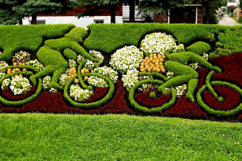 Garden decoration ideas interior decorating idea for Interesting garden designs