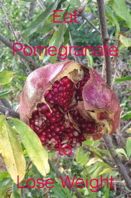 Eat Pomegranate to Lose Weight