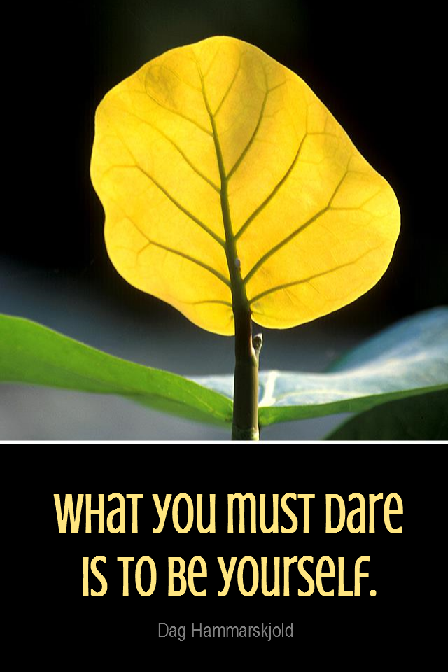 visual quote - image quotation for INDIVIDUALITY - What you must dare is to be yourself. - Dag Hammarskjold
