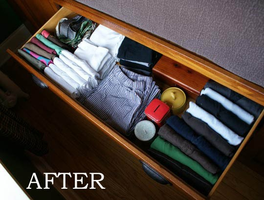 Drawer Dresser Organizer Dresser Drawers Fun