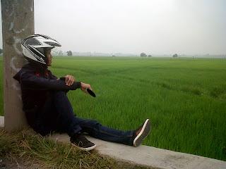 Menikmati suasana persawahan di Pringsewu Lampung