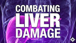 CBD vs Liver Damage