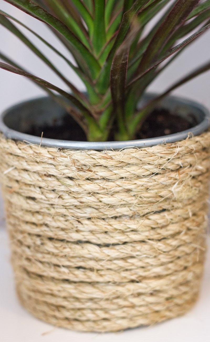 DIY plant can jute rope