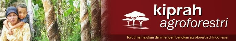 Kiprah Agroforestri