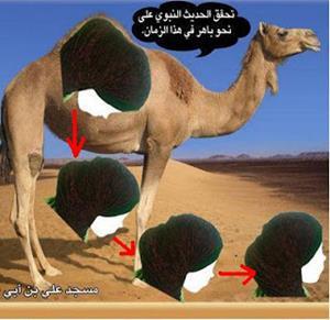 Fashion Hijab Bersanggul 1