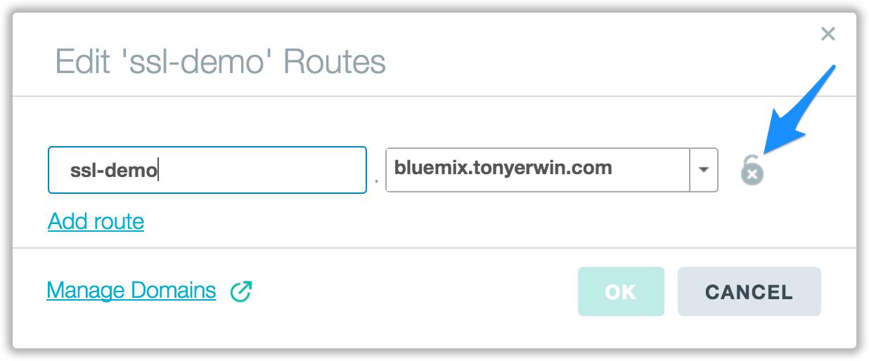 Edit Route Dialog Before SSL Cert Upload