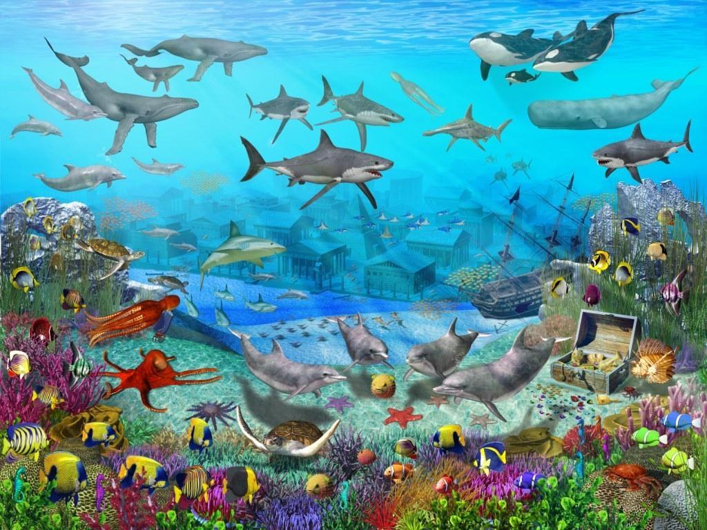 Peces en el mar for Bajar fondos de escritorio gratis