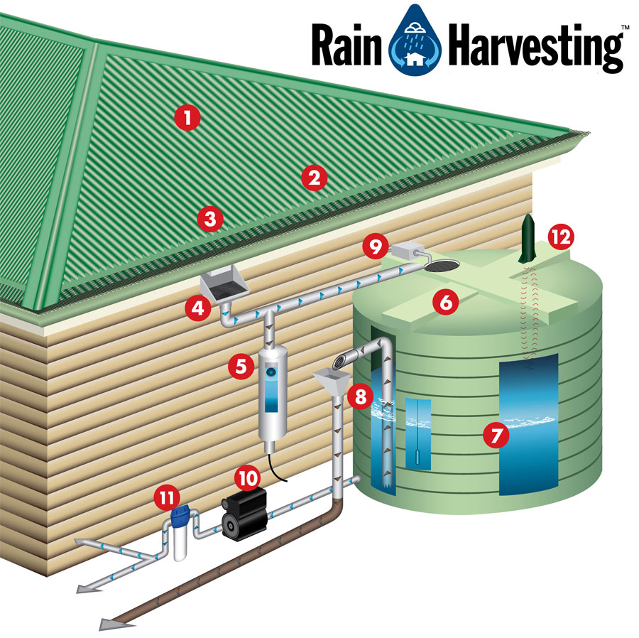 H meskape step 1d ideas for plumbing of green buildings for Build a rainwater collection system