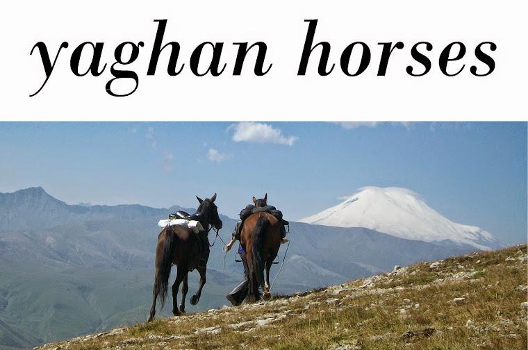 Yaghan Horses
