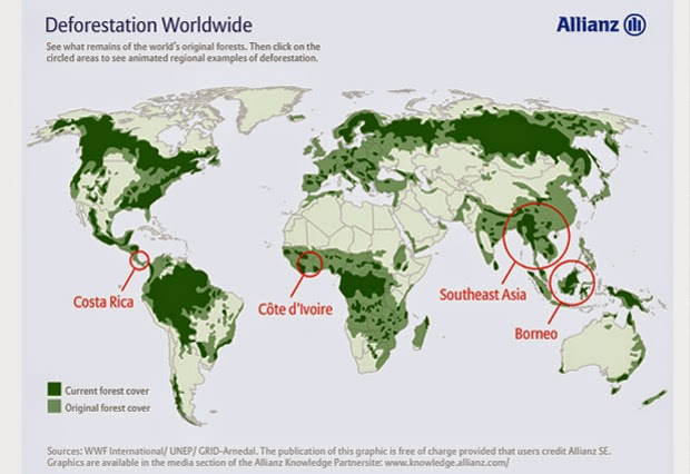 deforestation of southeast asia