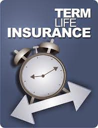 What are the Advantages of Term Life Insurance Policy?