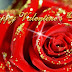Red Rose-Flower Valentine,s Day Greeting Cards Designs Photos-Happy-3D-Animated Valentine,s Cards Images 2015