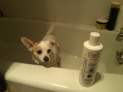 John Paul Pet Tearless Dog Shampoo