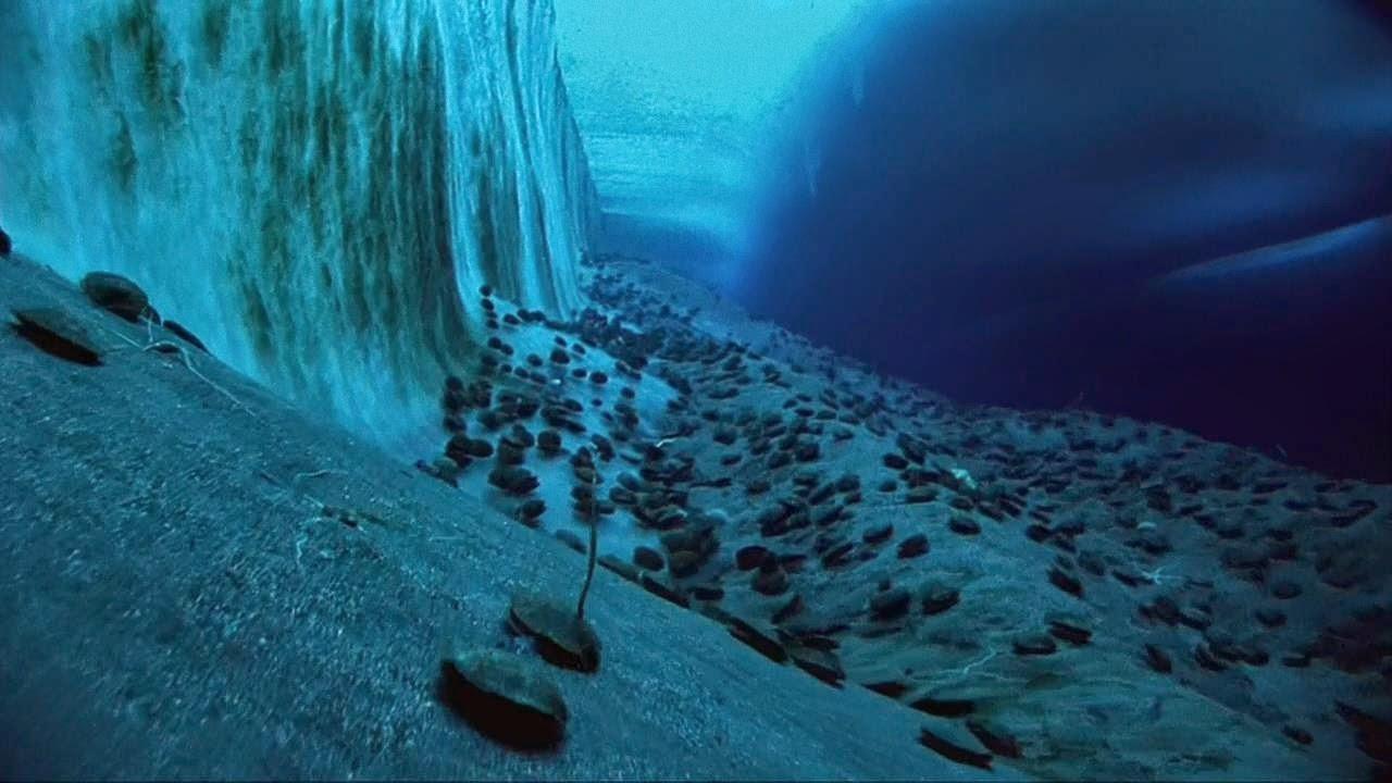 Diving footage.
