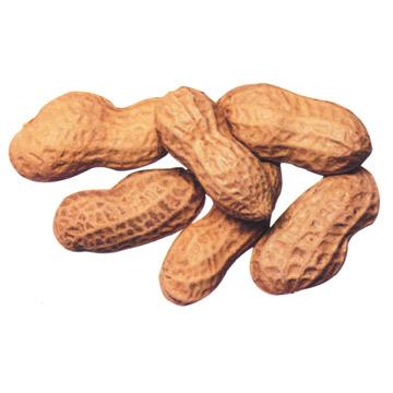 Best Peanut
