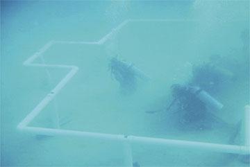 Penyelam bina masjid pertama di bawah air