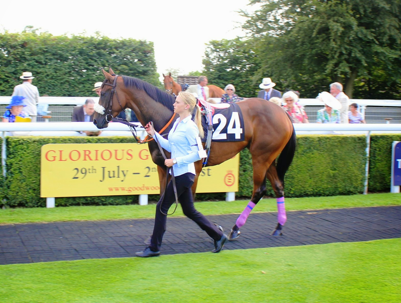 Glorious Goodwood 2014