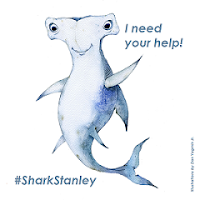Help a Shark Out!