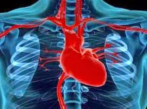 Jantung berdebar Tanda Bahaya Kehamilan