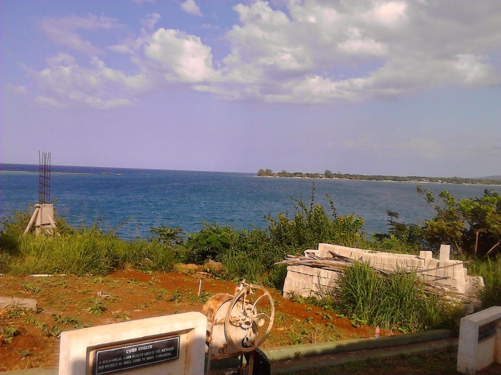 http://lionessrebirthorg.blogspot.com/