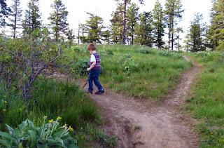 Little Mister going up a path