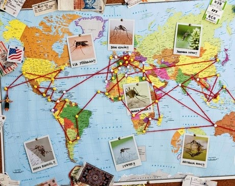 Negara tujuan wisata murah di Asia dan Eropa untuk backpackers