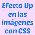 Efecto subir (Up) en las imagenes con CSS