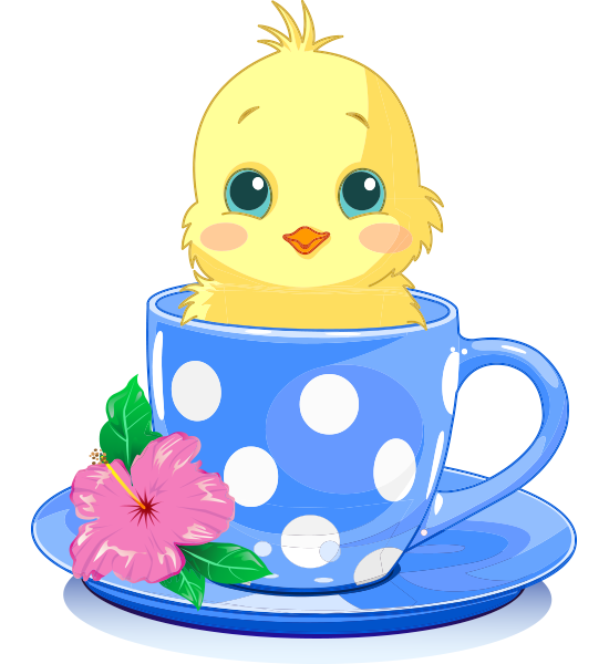 Teacup Chick