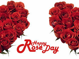 Happy-Rose-Day-2016-Images